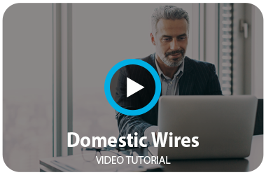Domestic Wires Tutorial