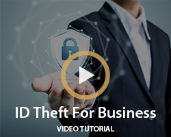 Business ID Theft 2017
