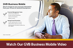 Business Mobile Banking Video