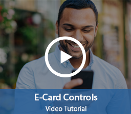Interactive Video Player E-Card Controls