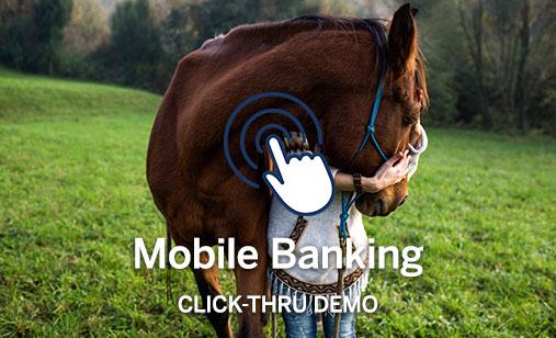 Mobile Banking Click-Thru Demo